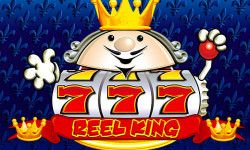 Play Reel King