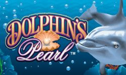 Play Dolphins Pearl