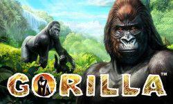 Play Gorilla