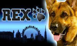 Play Rex™